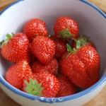 Die Erdbeersaison hat begonnen