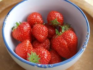 Erdbeersaison hat begonnen, erbeeren