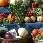 Deutschland ist größter Absatzmarkt für Bio-Produkte in der EU