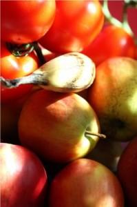 Frisches Obst und Gemuese