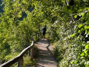 Joggen in der Natur, Laufen