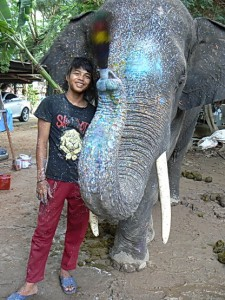 Elefanten Malen