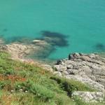 Taucher entdeckt Fotoschatz auf Meeresgrund