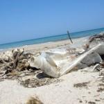 ″Recycling-Schiffe″ sollen Inseln von Müll befreien