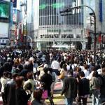 Hoffnung auf wachsendes Tierschutzbewusstsein in Japan