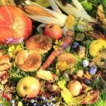 Obst und Gemüse - Freude für Körper UND Geist