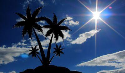 Insel, Sonne, Palme, Solarenergie, Inselstaat, positive Nachrichten