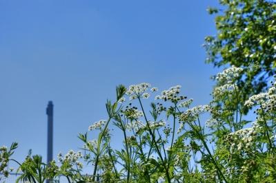 Heizkraftwerk und Natur, co2 freie kraftwerke, positive nachrichten