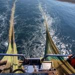 Intelligente Fangnetze für einen nachhaltigen Fischfang