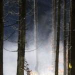 Polymer-Folie gewinnt Energie aus Wasserdampf