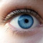 Neue Genkenntnis eröffnet Chance auf Therapie von Kurzsichtigkeit