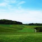 Baden-Württembergs Felder ab jetzt gentechnikfrei