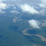 Entwarnung für Amazonas Regenwald