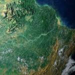M2M-Technologie zum Schutz des Regenwalds
