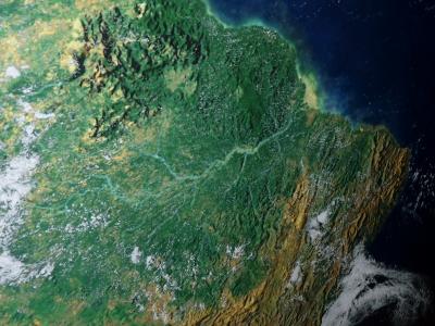 Regenwald am Amazonas, Gemalto, Cinterion, M2M, positive nachrichten