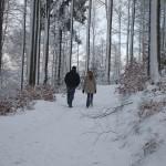 Gut fürs Blut: Spazieren gehen bringt mehr als Fitnesstraining