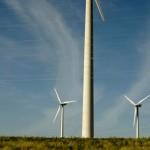 Feldheim: Ein Dorf mit eigener Energieversorgung