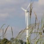 Das erste Wasserstoff-Dorf liegt in Dänemark