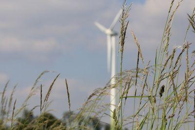 Windenergie, Windrad, Wasserstoff-Dorf , lolland