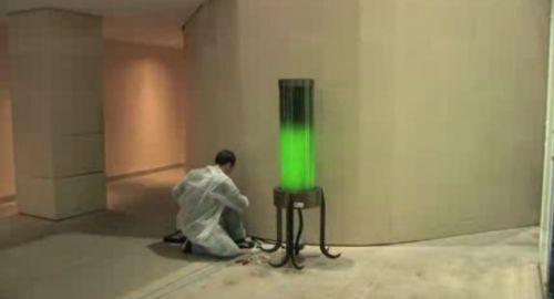 microalgae lamp, positive nachrichten