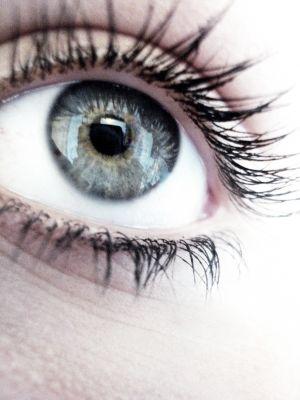 Auge, Makula, gelber fleck. positive nachrichten, augentropfen, cholesterin senken