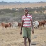 Junge erfindet LED-System zum Schutz von Menschen und Viehbestand