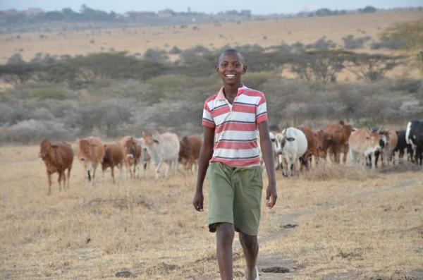 Richard Turere, Kenya, Nairobi Nationalpark, kenia, positive nachrichten, lion lights, led-system