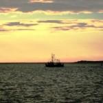 Satelliten finden kriminelle Fischer
