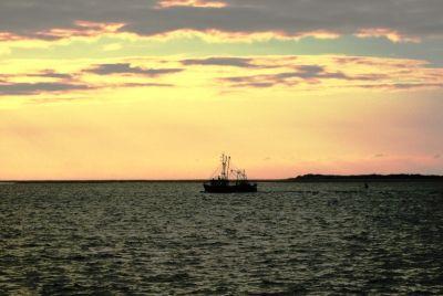 Fischerboot, positive nachrichten