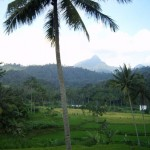 Großer Erfolg für Ureinwohner Indonesiens