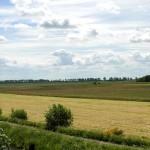 Niedersachsen wird gentechnikfrei