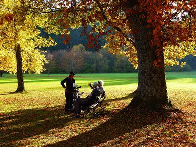 Senioren, leocorno, positive nachrichten