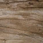 Langlebige und umweltfreundliche Batterie aus Holz