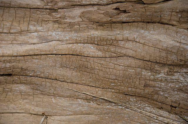 Batterie aus Holz, positive nachrichten