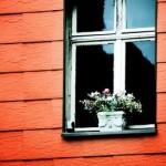 Passend zum Wetter: selbstkühlende Fenster
