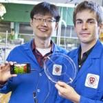 Forscher erfinden durchsichtigen und dehnbaren Lautsprecher