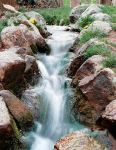 Lebensraum Wasser – Vielfalt entdecken, erleben, erhalten, positive nachrichten, deutscher naturschutzpreis 2013