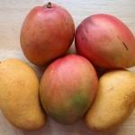 ″Klein Eden″ – Exotische Früchte aus den ″fränkischen Tropen″