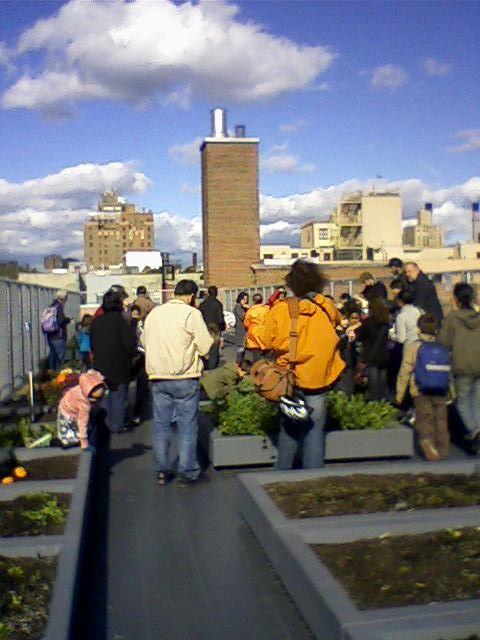 dachgarten, garden roof, schrebergaerten auf wolkenkratzern, positive nachrichten, urban farming