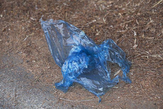 Plastiktuete, positive nachrichten, umweltschutz