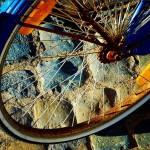 ″Das Leben ist wie ein großes Radrennen″ – Paulo Coelho