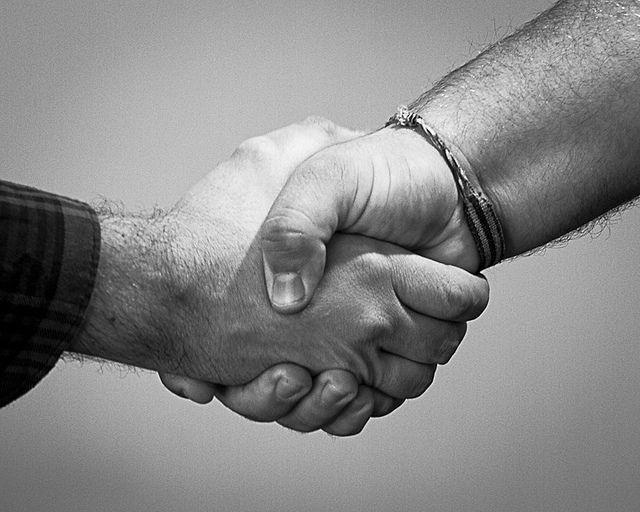 handshake, handschlag, hand reichen, hilfe, Engagement