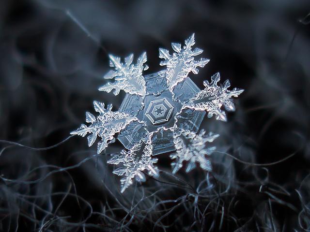 Alexey Kljatov, schneeflocke auf dunkler wolle, kristall, vergoessert, positive nachrichten