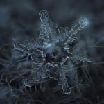 Atemberaubende Schneeflocken-Bilder mit simpler Kamerakonstruktion