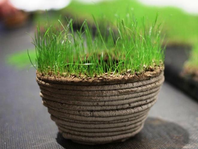 Tiskaj zeleno, 3d grasdrucker, fertiger druck, positive nachrichten