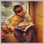 Win-Win-Situation: Kinder lesen Katzen vor