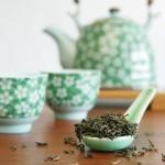Grüner Tee verbessert Gehirnleistung