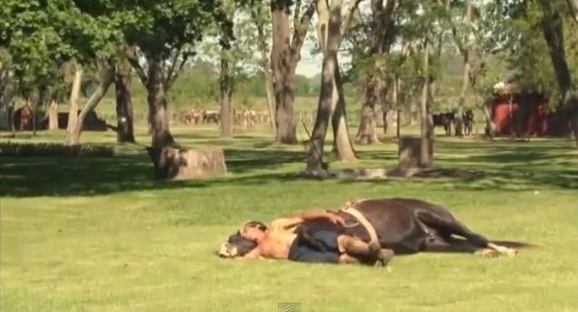 Horse Yoga, Pferde Yoga, positive nachrichten