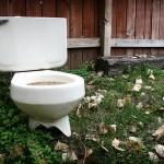 ″Grüner″ Zement aus alten Toiletten-Schüsseln