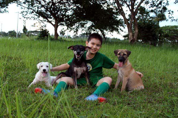 Happy Animal Club, Ken mit drei gluecklichen Hunden, positive nachrichten